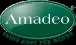 go to Amadeo